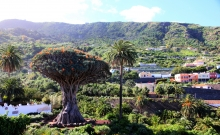 Obiective Turistice Tenerife_1