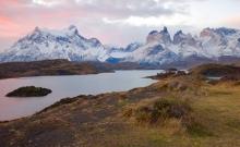 Jocul secret: Urmarirea unor lei de munte in Patagonia 3