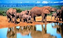 Viitorul turismului transfrontalier in Africa 1