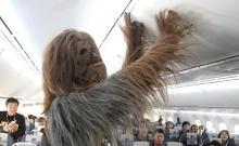 Avioane Star Wars 12