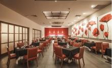 Hotel Occidental Allegro Playacar_6
