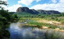 Parcul National Marakele din Africa de Sud 6