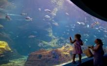 Obiective turistice Rhodos 2