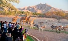 Top 10 atractii pentru copii in Dubai 8