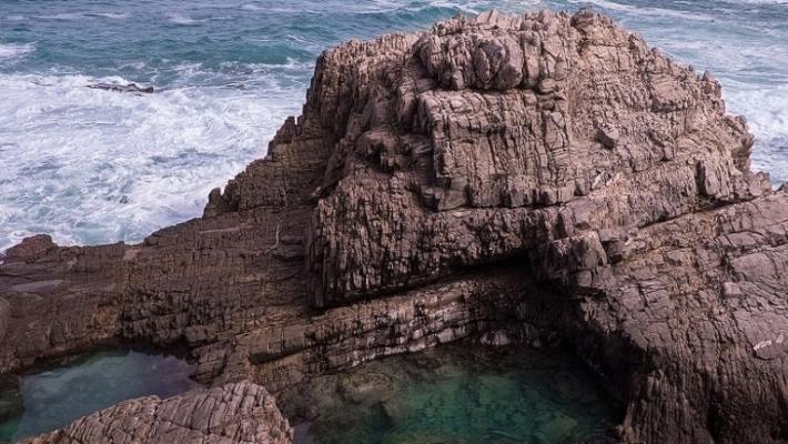 Pe urma balenelor in sudul Africii 4