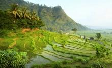 Obiective turistice Bali 1