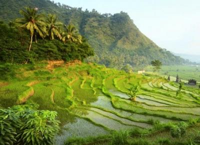 Obiective turistice Bali