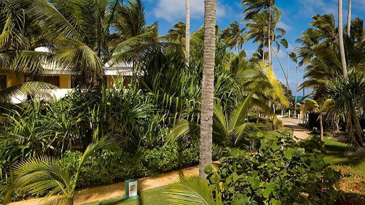 Melia Caribe Tropical 5