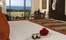 Hotel Paradisus Riviera Cancun 2
