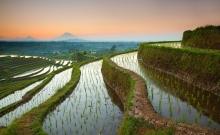 Romanii nu mai au nevoie de viza pentru a calatori in Indonezia 10