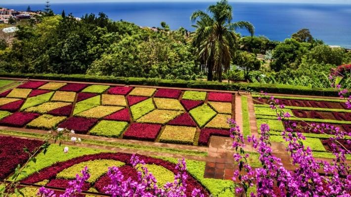 Paste Madeira 1.jpg