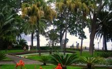 Paste Madeira 3.jpg