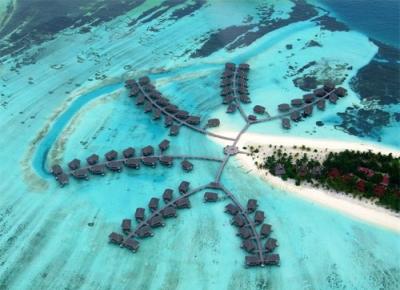 Oferta Speciala Targ MALDIVE
