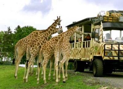 Serengeti Park - Germania