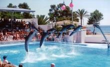 Atractii turistice Mallorca 3