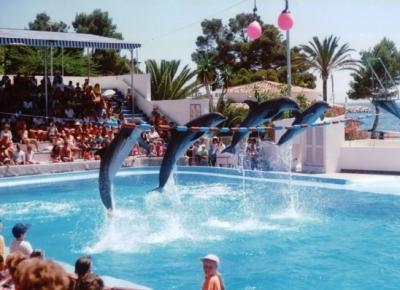 Atractii turistice Mallorca