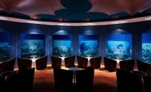 Clubul submarin din Maldive 3