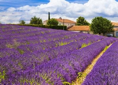 Circuit Franta Provence