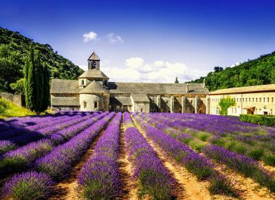 Paste Provence - Coasta de Azur