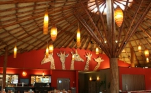 Serengeti Safari Lodge 6