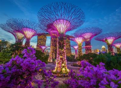 Sejur Singapore