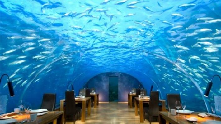 Clubul submarin din Maldive 4