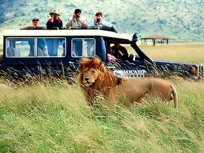 Viitorul turismului transfrontalier in Africa 5