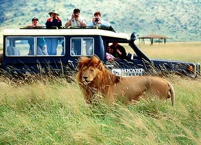 Viitorul turismului transfrontalier in Africa