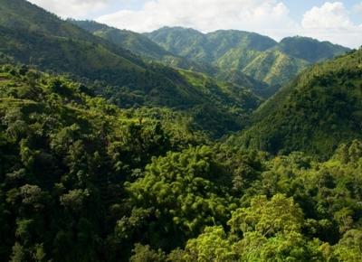 Guvernul din Jamaica va reglementa modul de dezvoltare a zonelor ce fac parte din Patrimoniul Mondial UNESCO